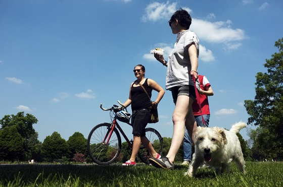 Perro-parque-Londres