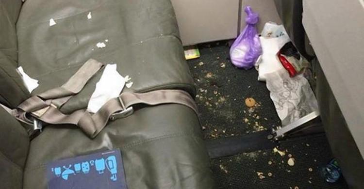 Porc dans l'avion