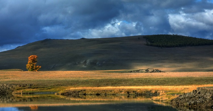 Mongolie - Flickr