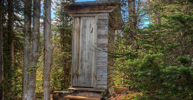 Wild toilet - Flickr John Payzant
