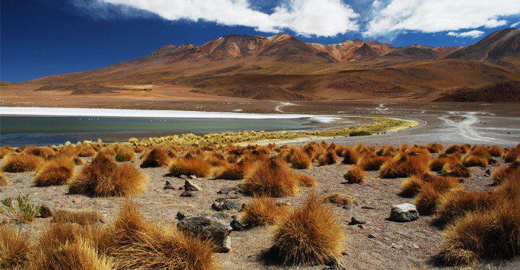 Bolivie - maisondesameriqueslatines.com