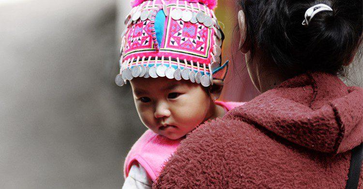 Bébé birman - jaboo2foto