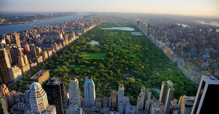 Vue de Central Park