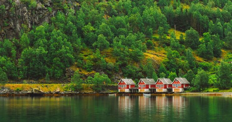 Vue des Fjords de la Mer de Norvège