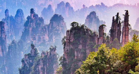 560-Laiwan-Ng-Zhangjiajie-Hunan