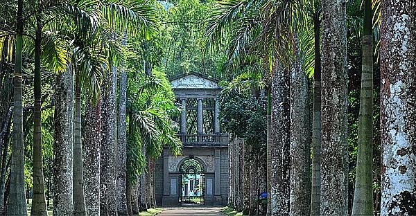 Rio - Jardin botanique