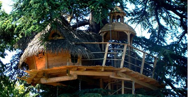 hôtel - Sur un arbre perché