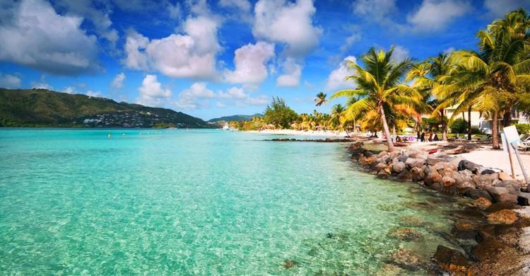 Martinique -Google