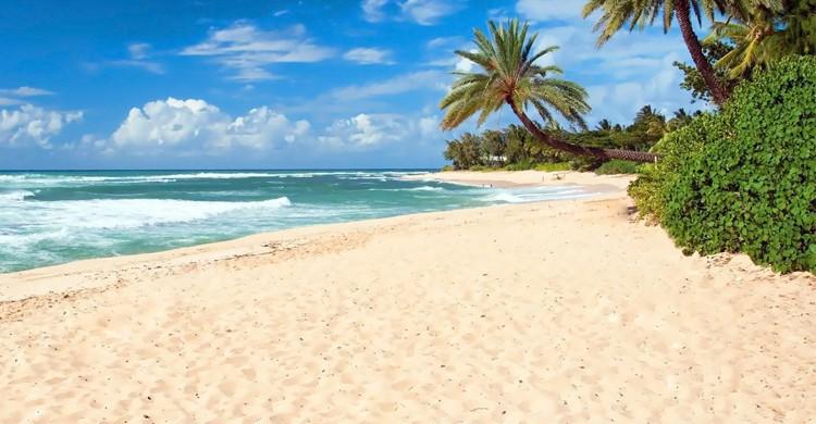 Wallis et Futuna - Easyvoyage