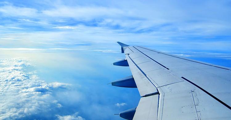 Aile d'avion - Socurious