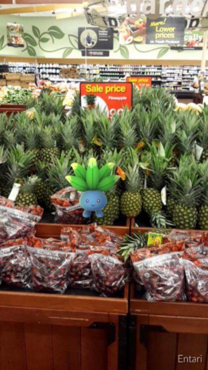 Pokémon dans un ananas - Entari
