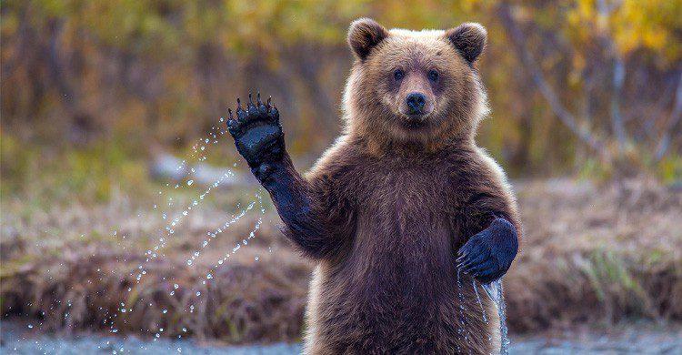 5 doigts de la main - undernierlivre