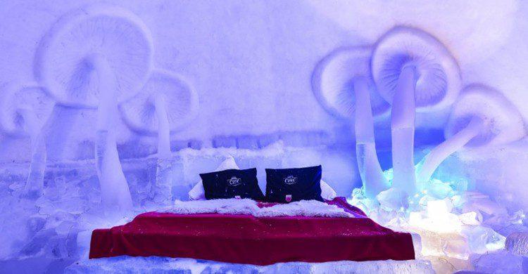 Hôtel of Ice - hotelofice