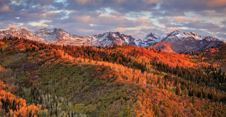 Wasatch 100, Utah aux États-Unis On vous prévient tout de suite : ce parcours est si dur que personne ne l'a jamais terminé (8000m d'ascension explique). Durant 161kilomètres, le coureur transpire entre canyons et sommets du Wasatch Front. En revanche, on ne saurait vous décrire la beauté de cette route entre la terre rougeâtre et la verdure végétale… La course se tient en début septembre et la condition pour pouvoir y participer est une journée d'entretien des routes (soit 8h). C'est ce qu'on appelle préparer le terrain !