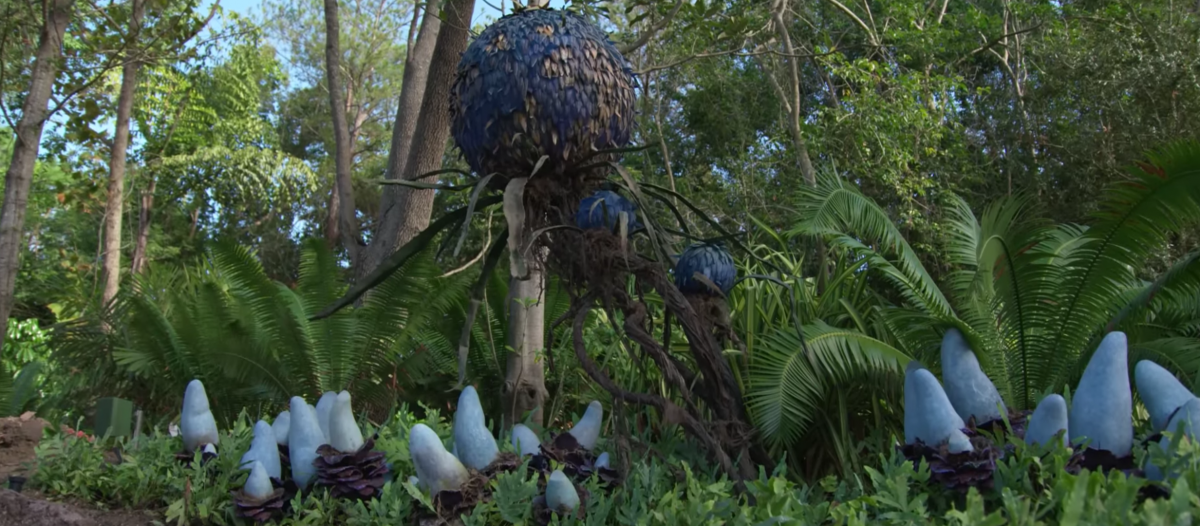 Découverte de la faune et de la flore   (SPOILER) Le réalisateur, dans une interview, nous explique que dans le prochain film les humains seront accueillis sur Pandora. Le parc fait de cette idée une réalité. Le visiteur pourra errer à travers le parc en observant la nature inventée par Cameron.   © Parc Avatar Orlando - Disney