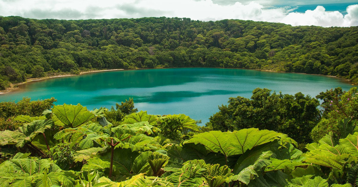 Le Costa Rica Pura Vida ! Le Costa Rica est le paradis des amoureux de la nature car le pays est réputé dans le monde entier pour être l'un où la faune et la flore sont les plus variées et protégées. Mais le Costa Rica est également un spot de choix pour profiter d'un soleil généreux, d'une eau de baignade avoisinant les 28°C et d'une température extérieure affichant une bonne trentaine de degrés.