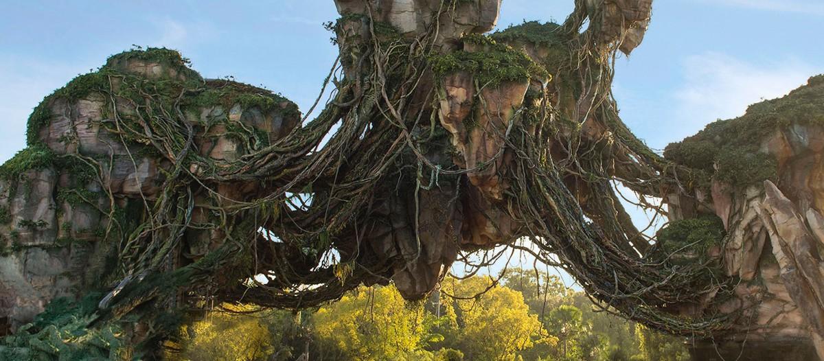 Plus vrai que nature   Le décor extérieur de Pandora est inspiré du  Parc naturel de la forêt de Zhangjiajie  . Il semblerait que le parc d'attraction nous plonge dans un paysage digne de l'original chinois !   © Parc Avatar Orlando - Disney