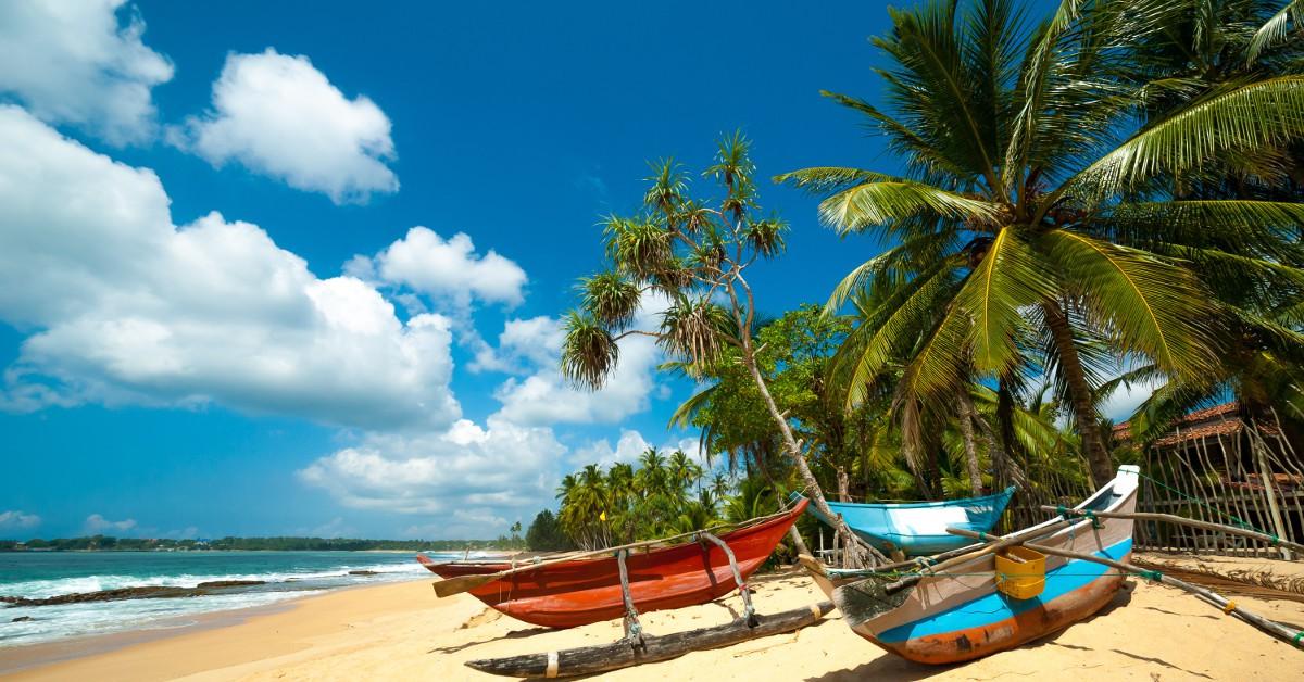 Le Sri Lanka Voilà un autre paradis des amoureux des plages de sable fin, de l'eau turquoise, de montagnes majestueuses et d'une flore des plus généreuses. Le Sri Lanka réunit tout ça et même plus, car la destination compte parmi les moins chères du moment. Du coup, vous pourrez pourquoi pas vous offrir le luxe de dormir dans un resort haut de gamme car les prix n'ont rien à voir avec ce que l'on connaît en Europe. Et pour rester dans des proportions plus raisonnables, sachez que 30€, voire 40€ par jour suffisent pour y vivre comme un pacha.