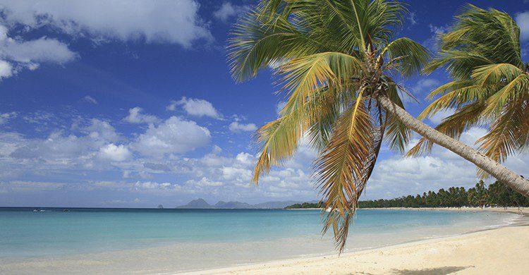 Les Salines plage (Istcok)